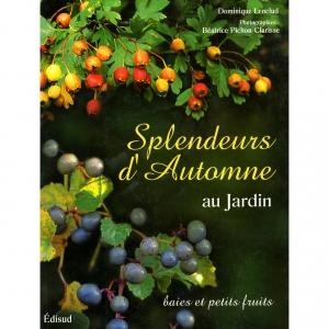 splendeurs-automne001