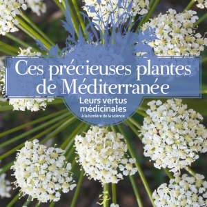 precieuses-plantes-amazon.jpg